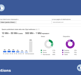 combinare adwords e facebook ads